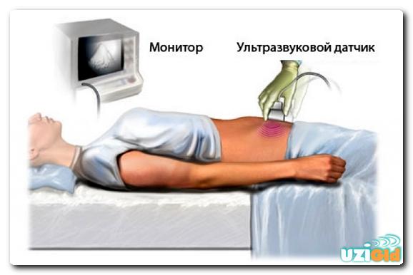 Как правильно сдавать кровь из вены на анализы