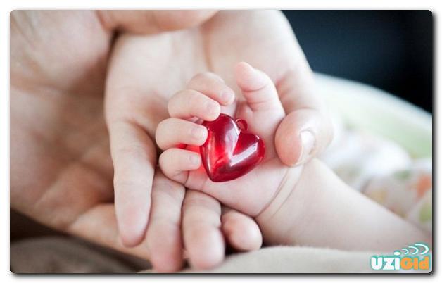 узи сердца плода при беременности