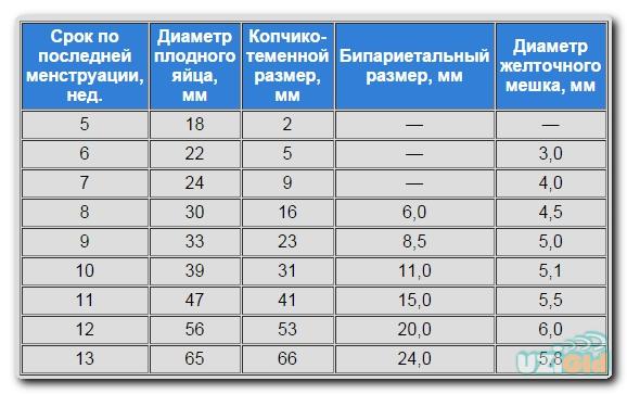 параметры плода по узи по неделям таблица
