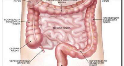 Показания и подготовка к УЗИ кишечника